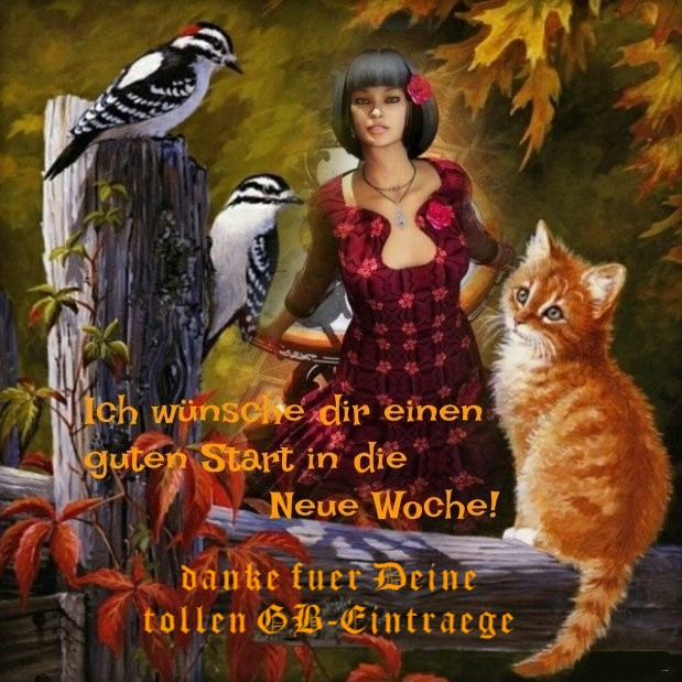 An den Beitrag angehängtes Bild: http://img1.dreamies.de/img/182/b/eadr6hkhcn1.jpg