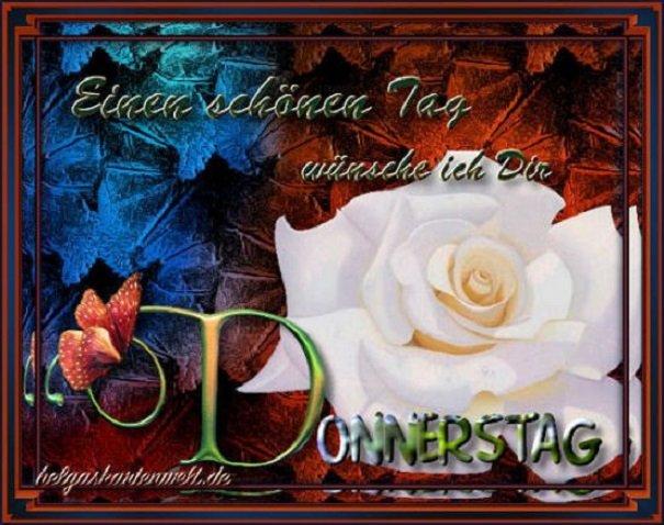 An den Beitrag angehängtes Bild: http://img1.dreamies.de/img/31/b/01ikrzqmde3.jpg