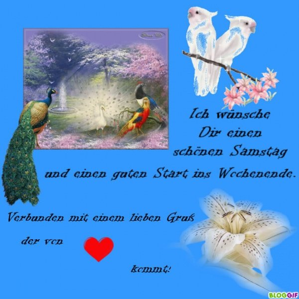 An den Beitrag angehängtes Bild: http://img1.dreamies.de/img/323/b/rtand76fsgh.jpg