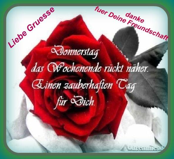 An den Beitrag angehängtes Bild: http://img1.dreamies.de/img/324/b/liggxu9cevp.jpg