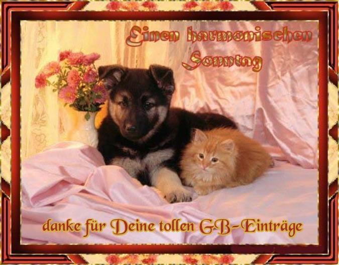 An den Beitrag angehängtes Bild: http://img1.dreamies.de/img/337/b/ok1wot3s6b3.jpg