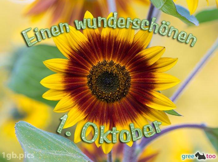 An den Beitrag angehängtes Bild: http://img1.dreamies.de/img/443/b/fcauivj5jsa.jpg