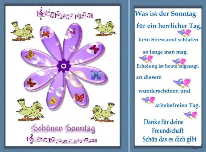 An den Beitrag angehängtes Bild: http://img1.dreamies.de/img/522/b/zg3j8zo6xem.jpg