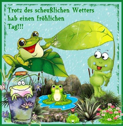 An den Beitrag angehängtes Bild: http://img1.dreamies.de/img/566/b/bi38t9azt3z.jpg