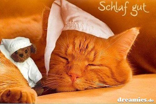 kostenlose chat seite Lahr/Schwarzwald