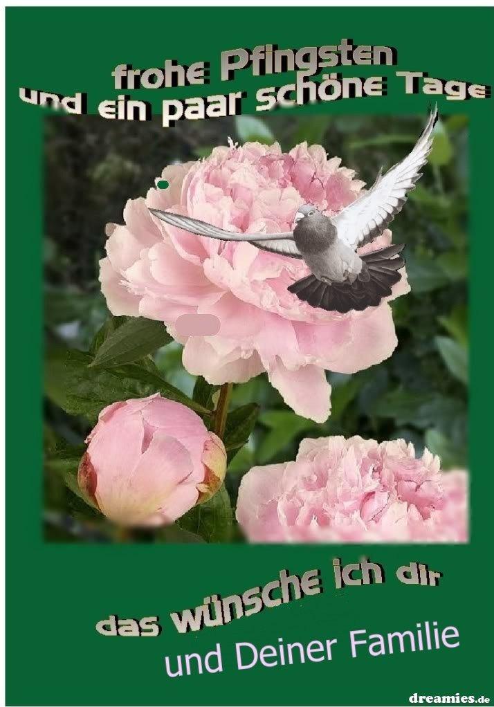 An den Beitrag angehängtes Bild: http://img1.dreamies.de/img/598/b/zgyomlgri5r.jpg