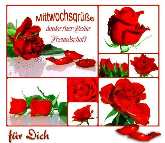 An den Beitrag angehängtes Bild: http://img1.dreamies.de/img/60/b/kourp2udbvh.jpg