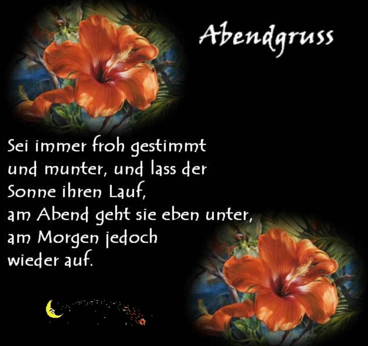 An den Beitrag angehängtes Bild: http://img1.dreamies.de/img/715/b/z6sd7jfh8zp.png