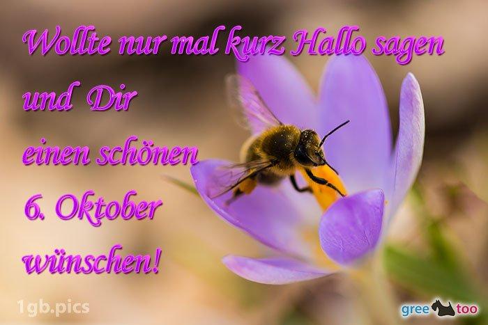 An den Beitrag angehängtes Bild: http://img1.dreamies.de/img/73/b/obugi32tall.jpg
