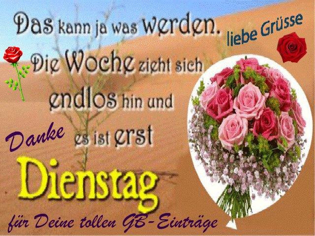 An den Beitrag angehängtes Bild: http://img1.dreamies.de/img/743/b/7cu7kqpv3lf.jpg