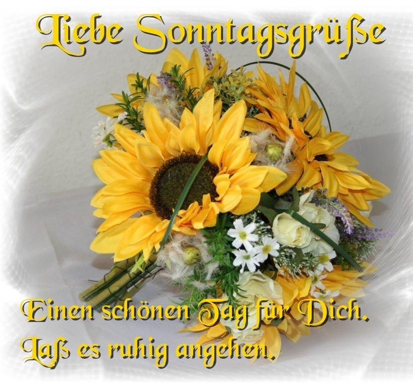An den Beitrag angehängtes Bild: http://img1.dreamies.de/img/900/b/wuan5xxf6eh.jpg