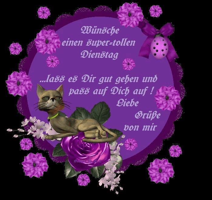 An den Beitrag angehängtes Bild: http://img1.dreamies.de/img/981/b/tgk4ljw99ha.jpg