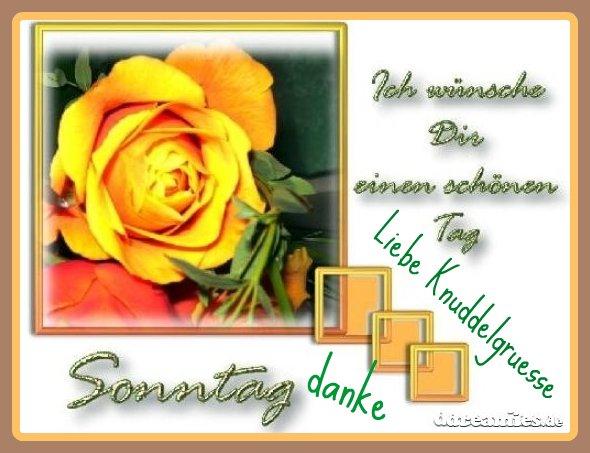 An den Beitrag angehängtes Bild: http://img1.dreamies.de/img/995/b/2l7jyf6kkhy.jpg