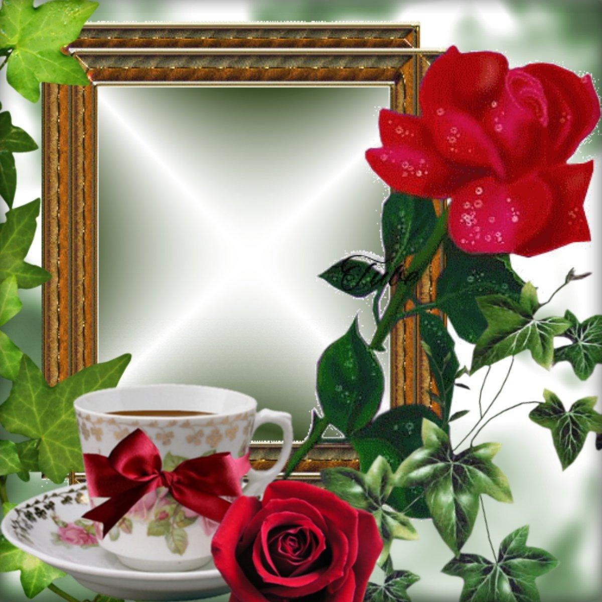 Приятного воскресного дня открытки красивые, картинки девушек