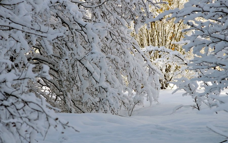 Zimski pejzaži-Winter landscapes - Page 6 Hzngle4i4lk