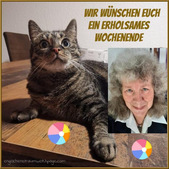 An den Beitrag angehängtes Bild: https://img1.dreamies.de/img/237/b/f5dqgzpfifx.png