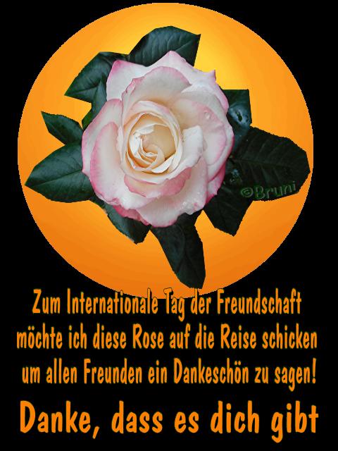 An den Beitrag angehängtes Bild: https://img1.dreamies.de/img/772/b/8wvg83lwoen.png
